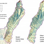 Comparison of modeled and observed leaf area index (LAI) for the Upper Santa Fe Municipal Watershed