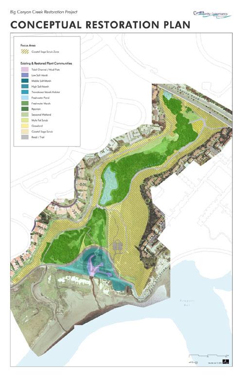 Conceptual Restoration Plan